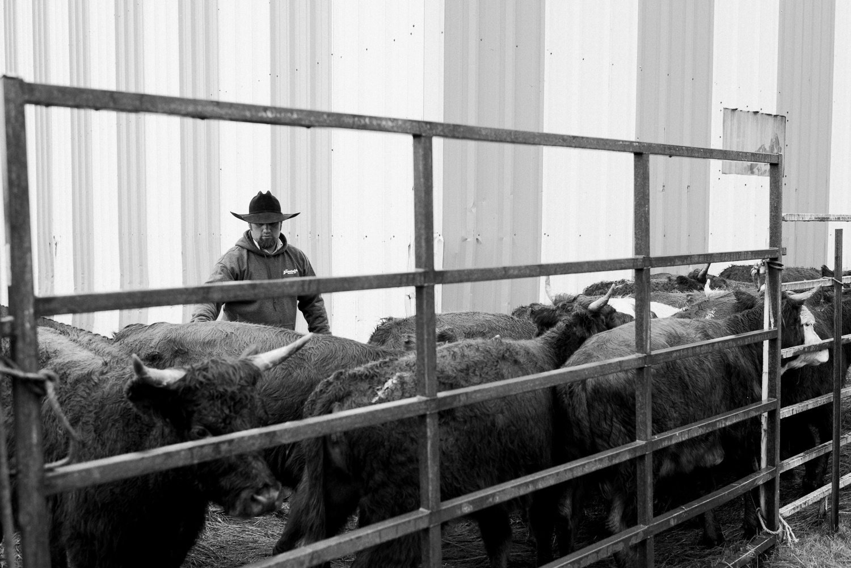 rodeo-family-in-alaska_25.jpg