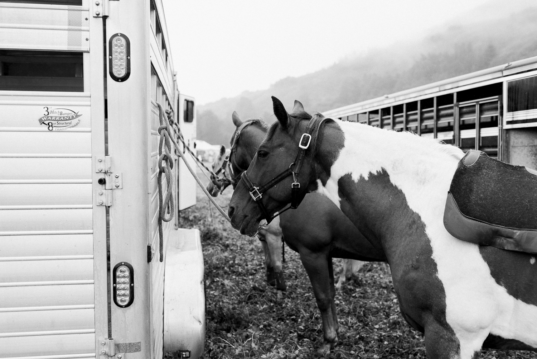 rodeo-family-in-alaska_34.jpg