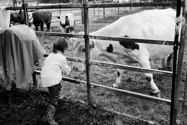 rodeo-family-in-alaska_67.jpg