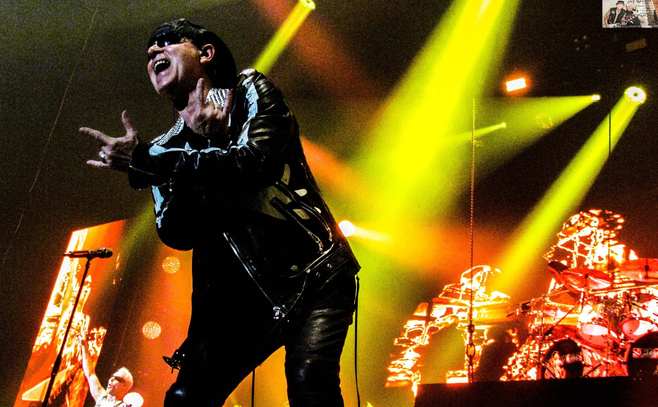 Scorpions 64.jpg