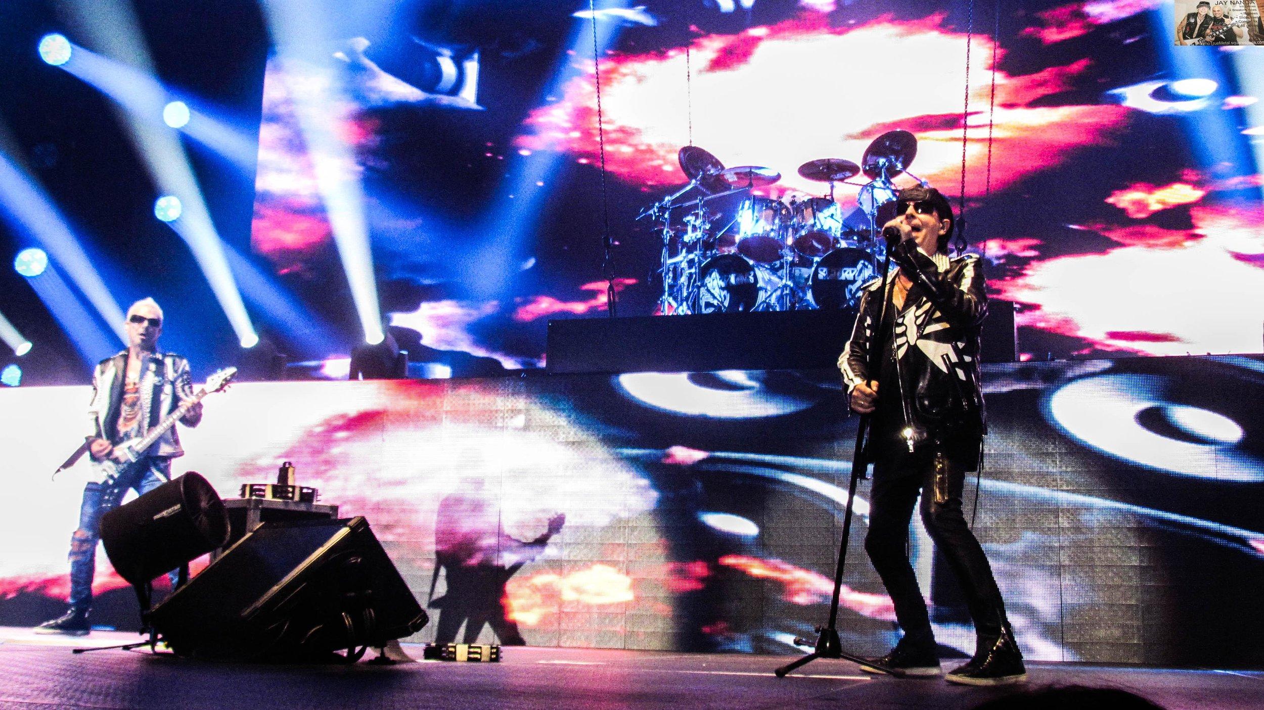 Scorpions 18.jpg