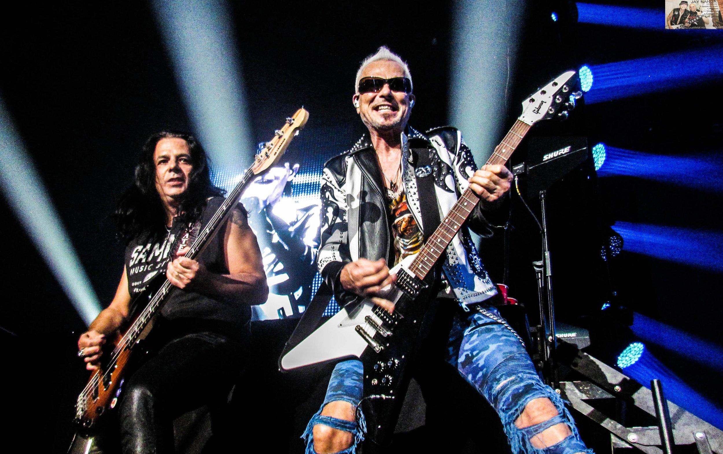 Scorpions 10.jpg
