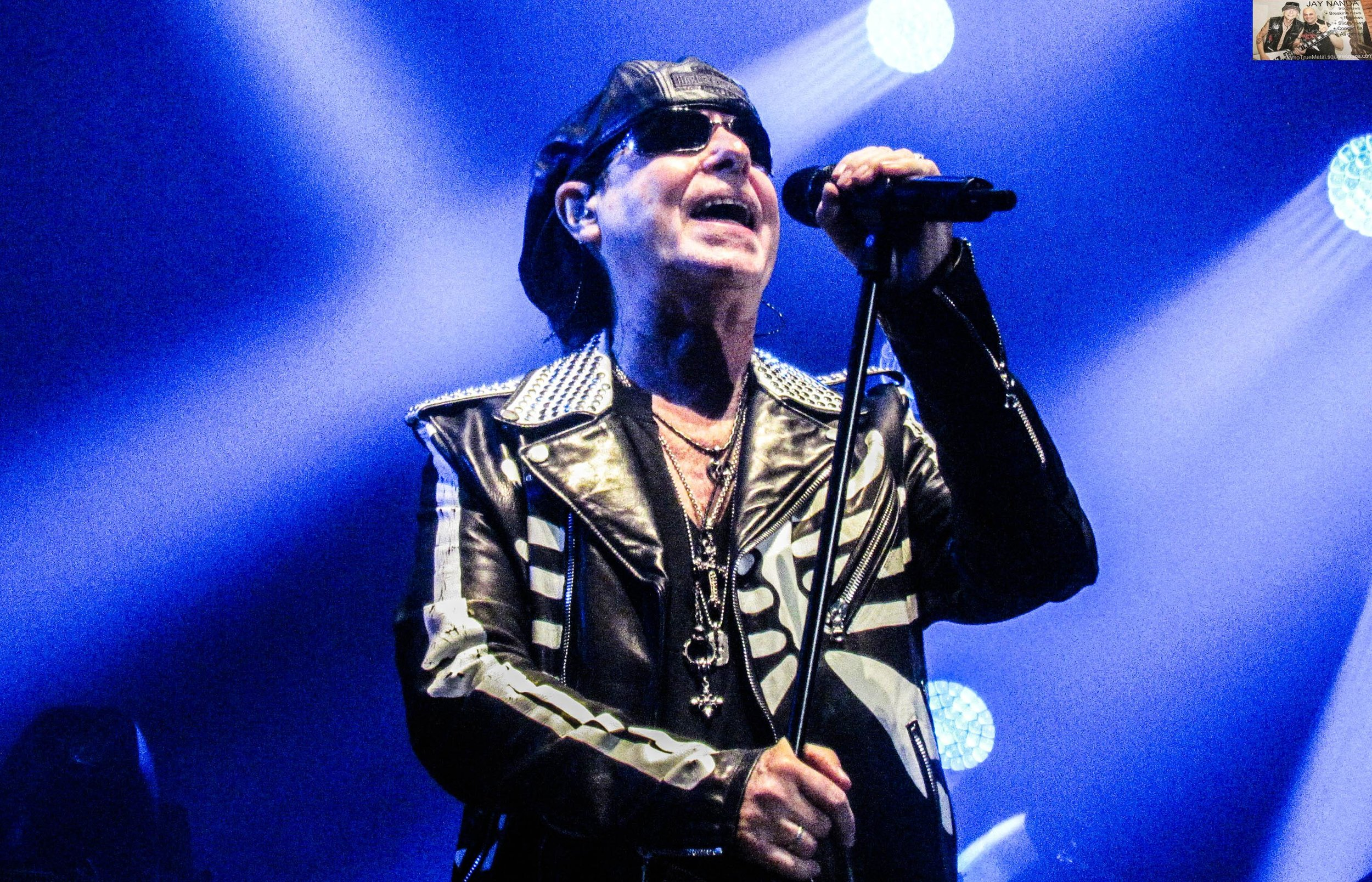 Scorpions 8.jpg