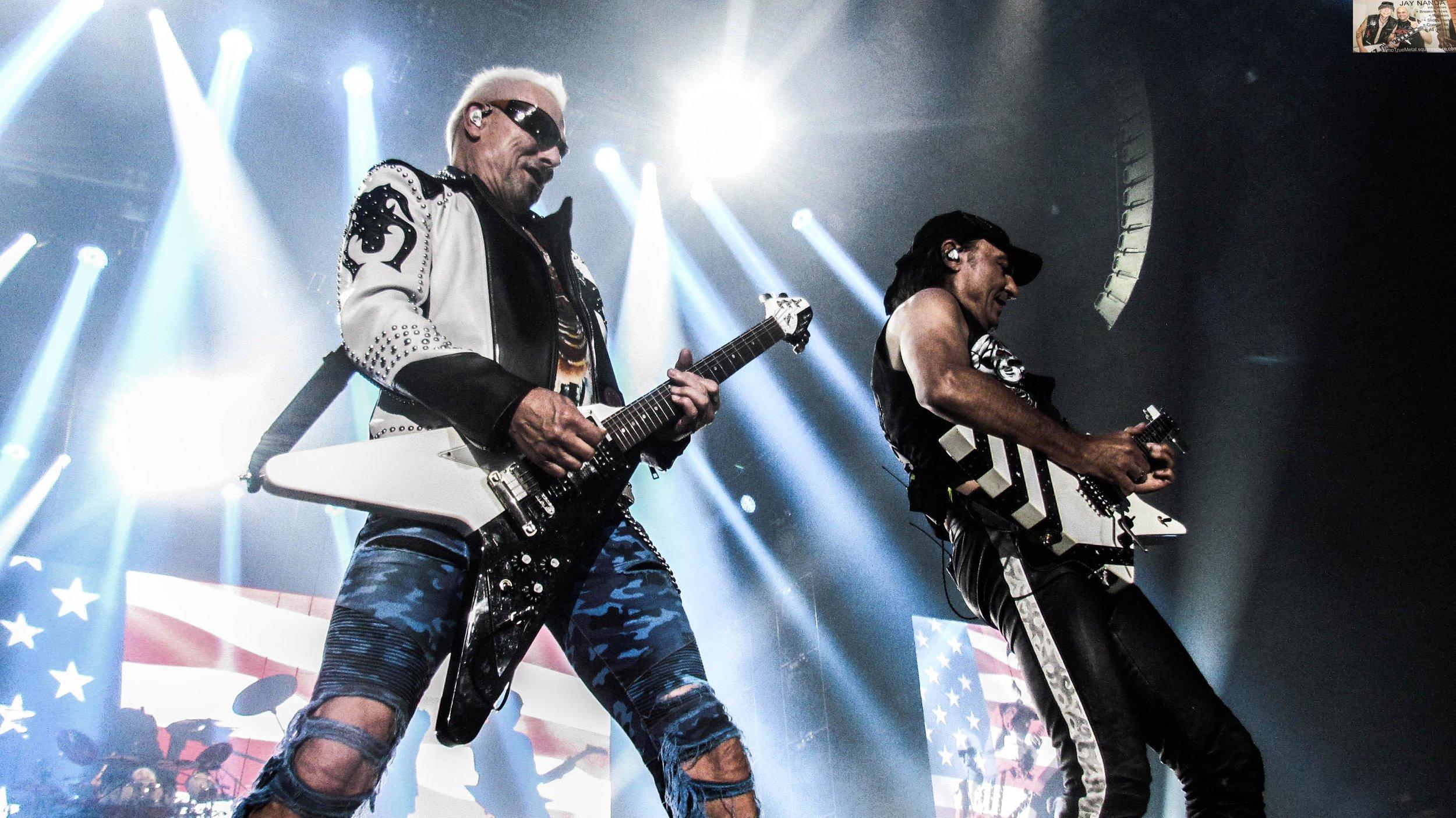 Scorpions 34.jpg