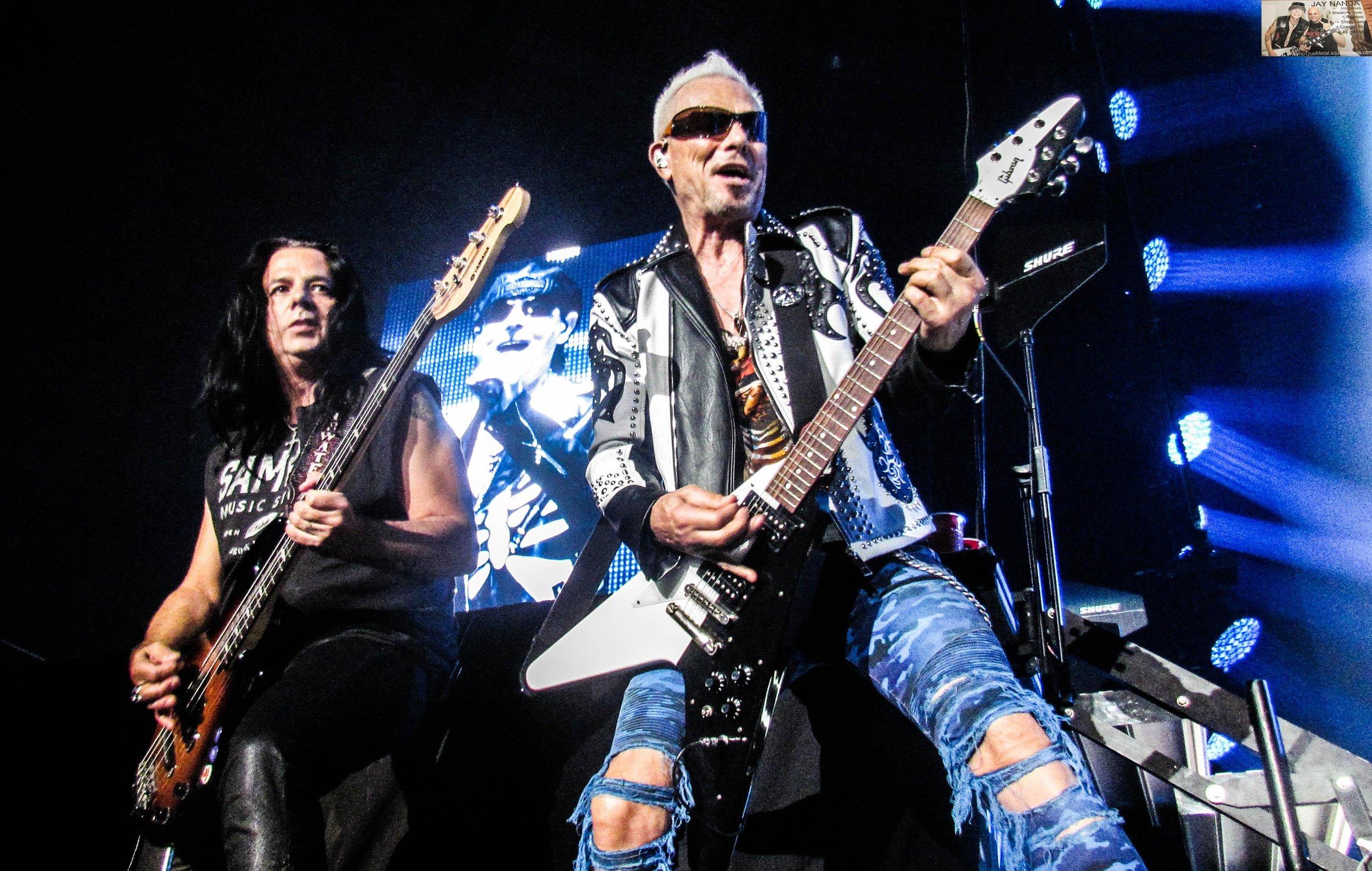 Scorpions 9.jpg