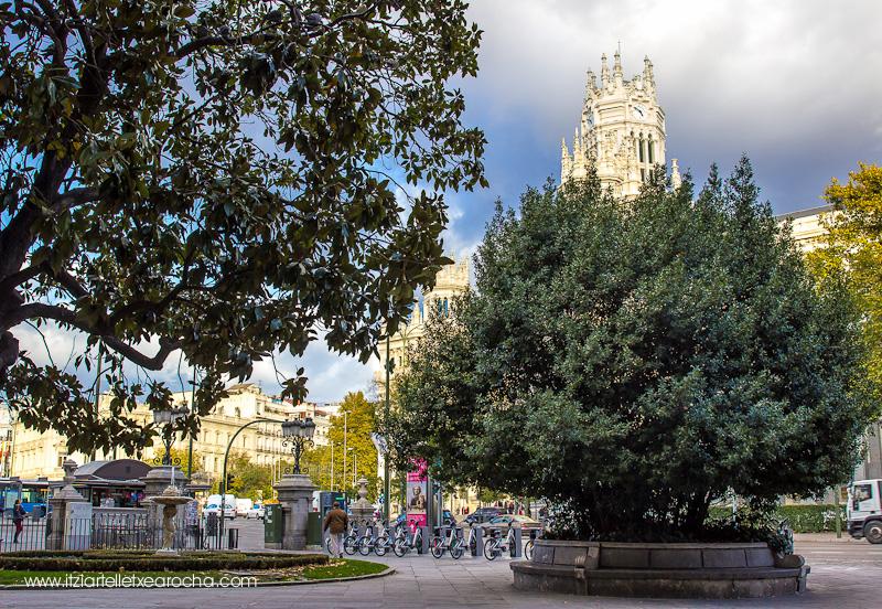 Madrid Nov 2015-9470.jpg