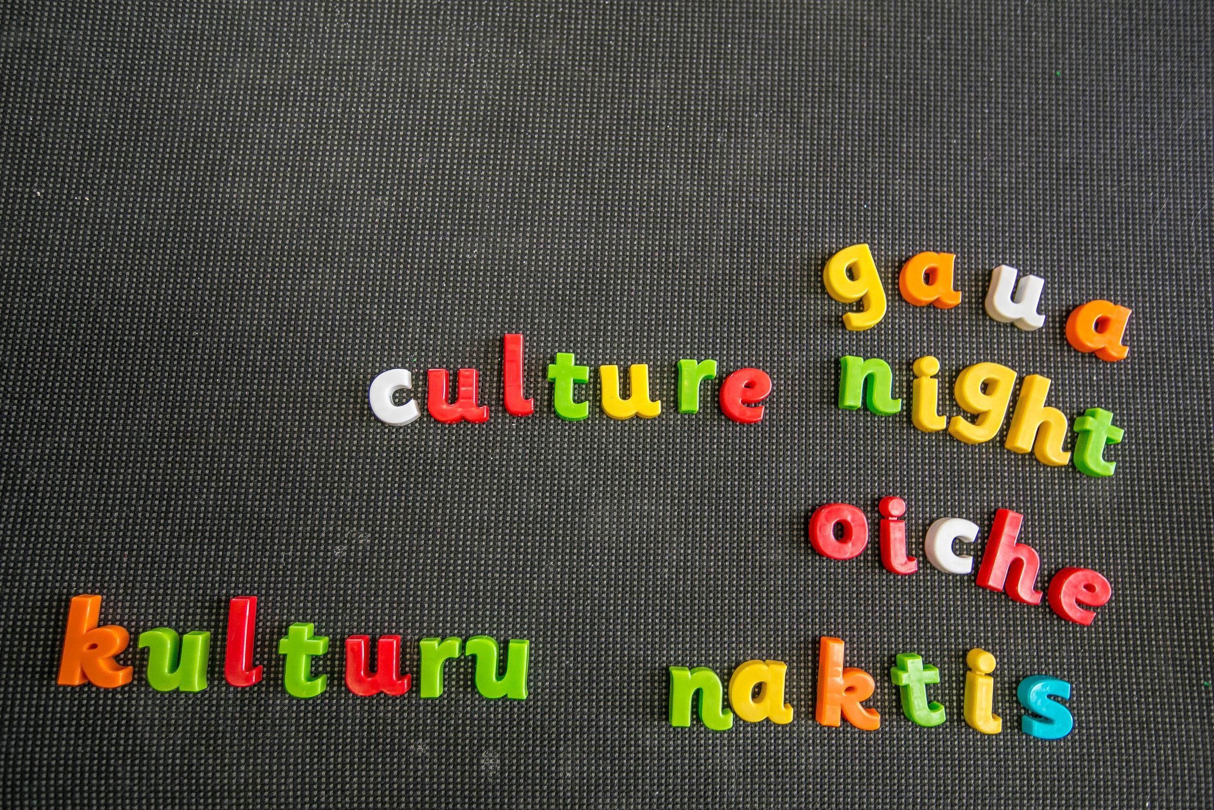 Culture NIght 2016-0501.jpg