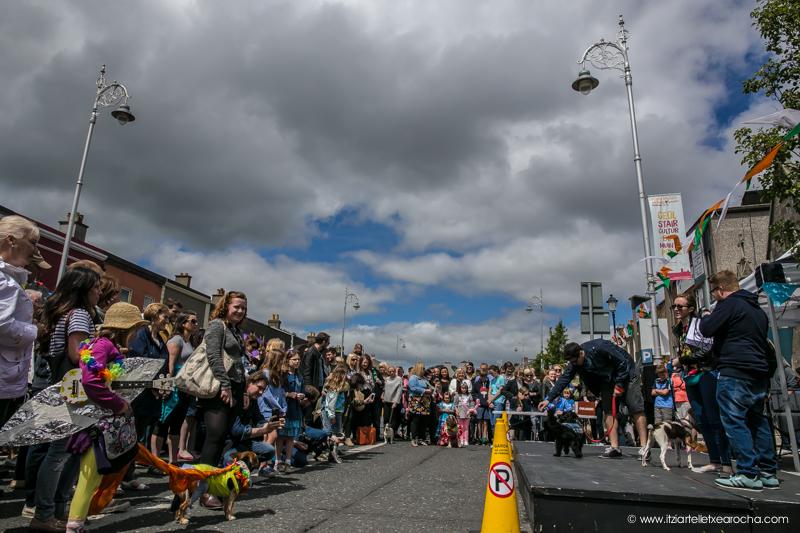 Pride and Stoneybatter Festival 2017-3451.jpg