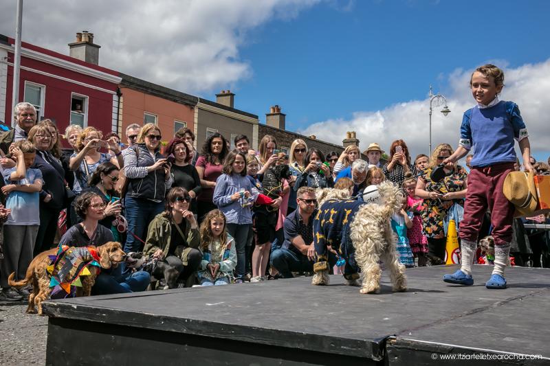 Pride and Stoneybatter Festival 2017-3499.jpg