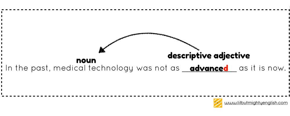 Primary School Vocabulary example