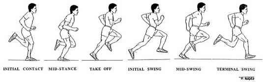 running-gait