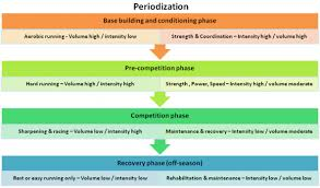 Basic periodization for a runner
