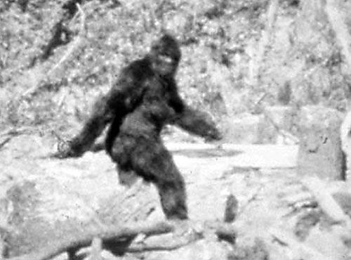 Copy of Still from the Patterson–Gimlin film
