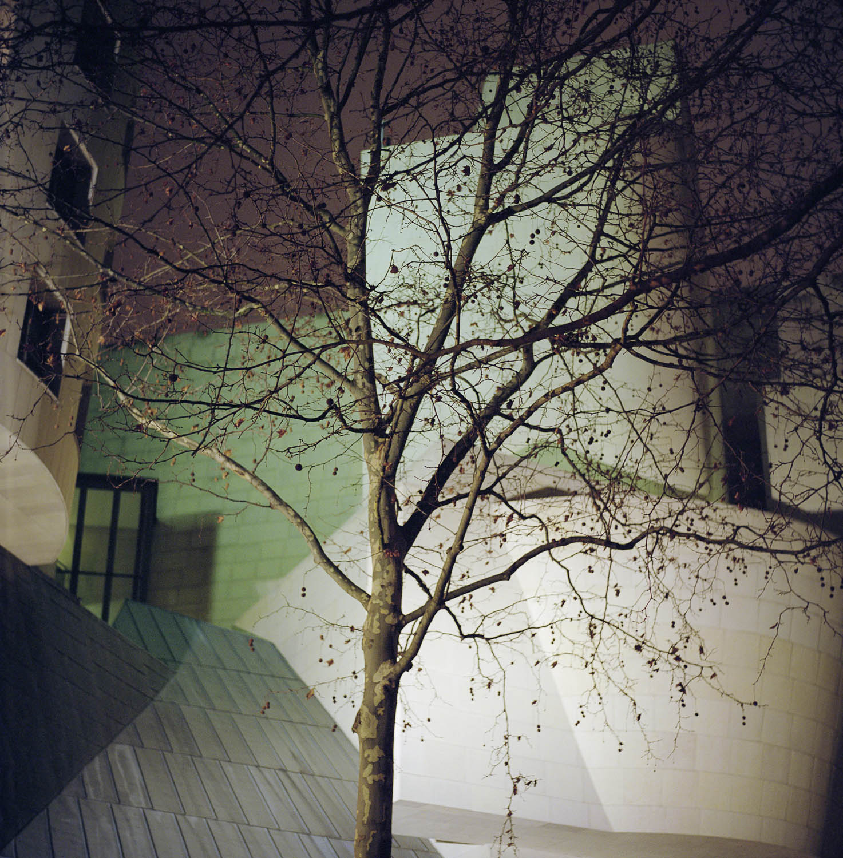 nocturnes-16.jpg