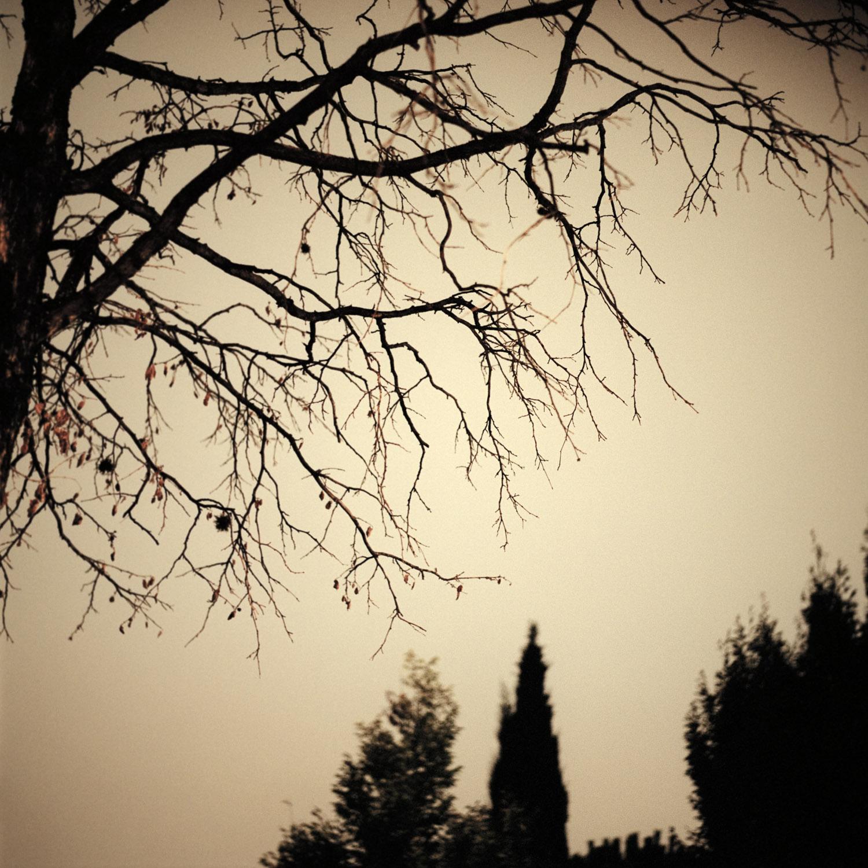 nocturnes-17.jpg