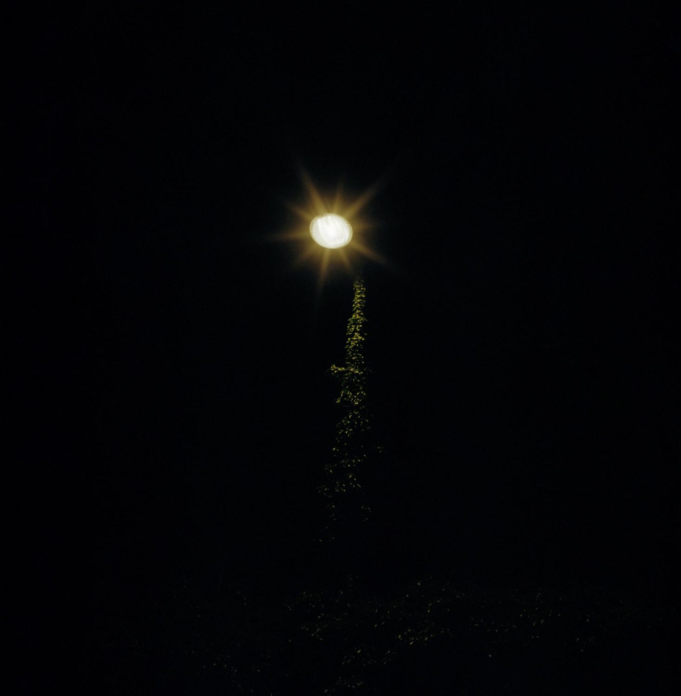 nocturnes-20.jpg