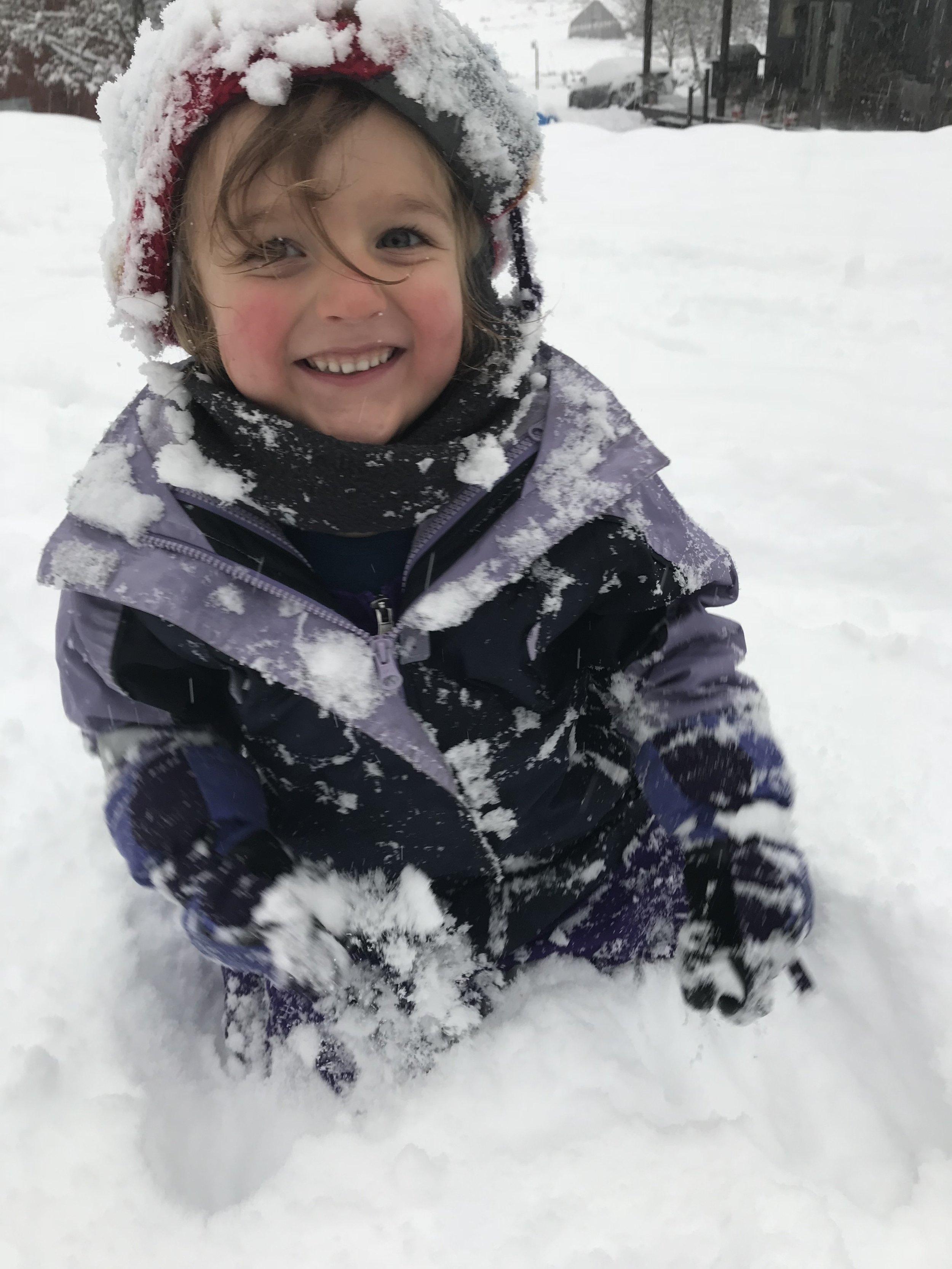 Reijo playing in freshly fallen snow.
