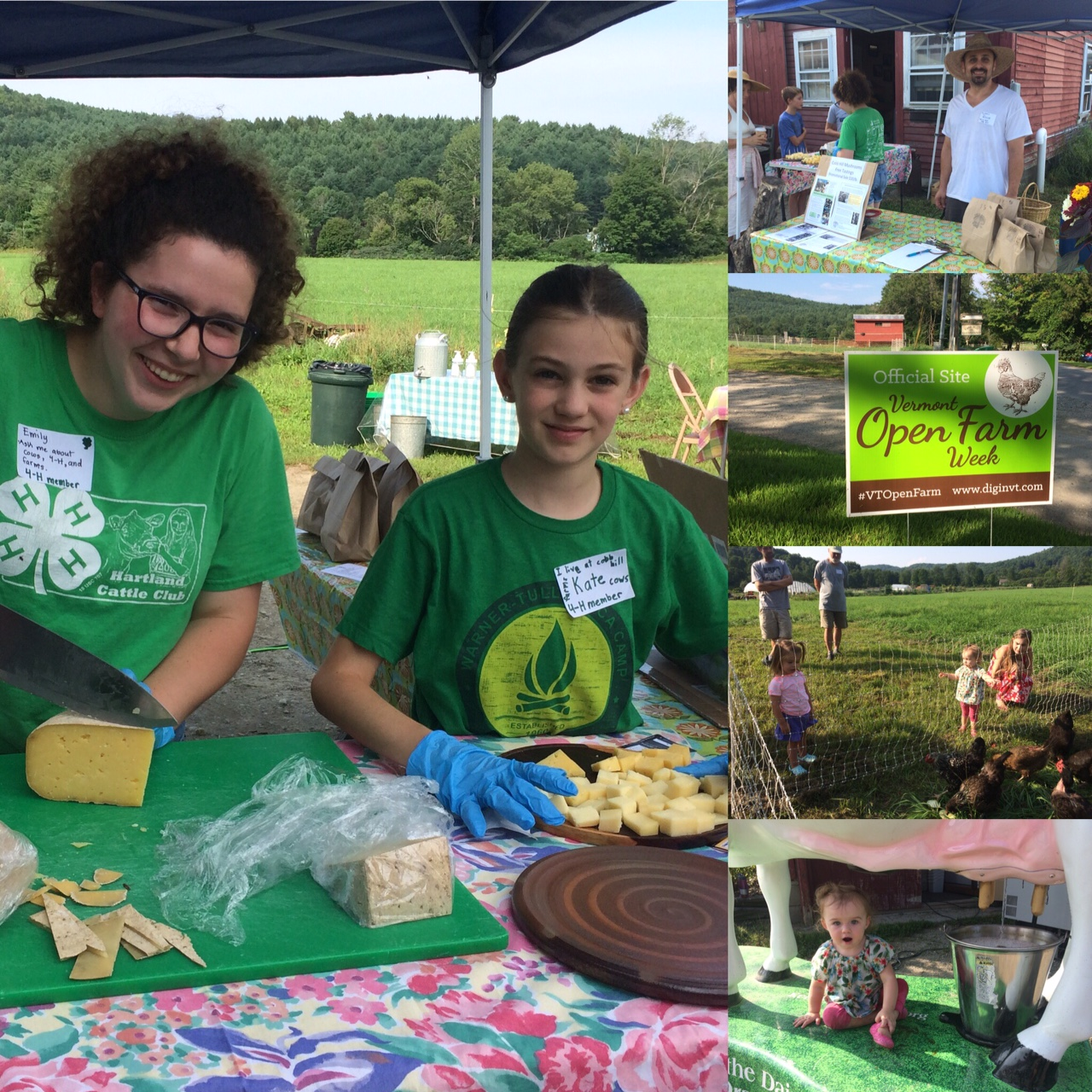 Cheese tastings, mushroom Pâté, honey, maple butter, outdoor oven-fired pita, lemonade stand, chickens...