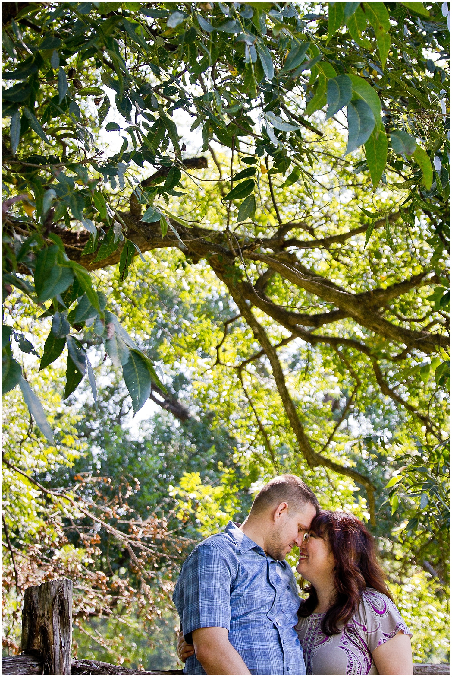 A couple embraces under a sunlit tree during their engagement portraits at Brazos Bluffs Ranch in Waco, Texas - Jason & Melaina Photography, www.jasonandmelaina.com