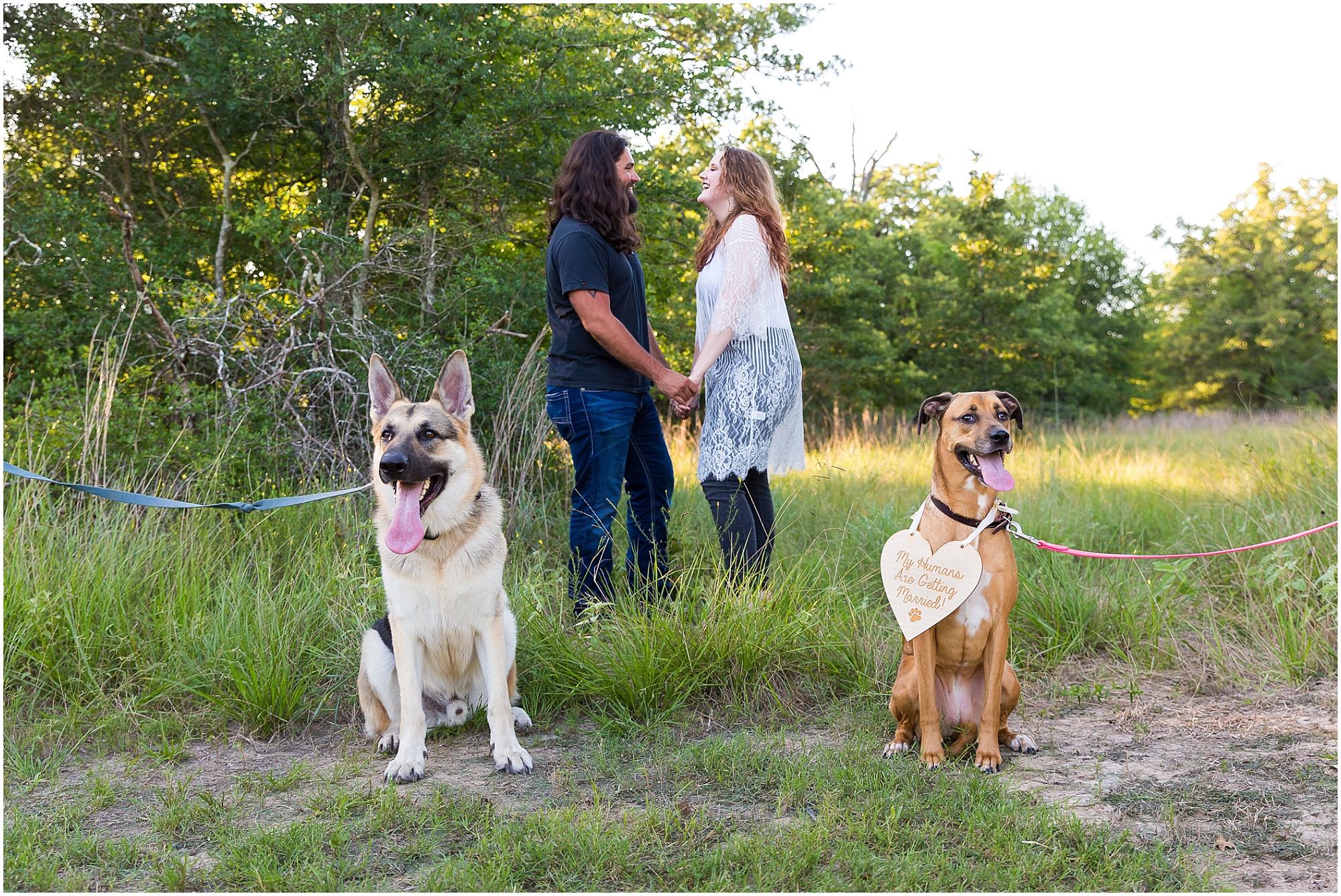 Couple pose with their two dogs for engagement photos in College Station, Texas - Jason & Melaina Photography - www.jasonandmelaina.com