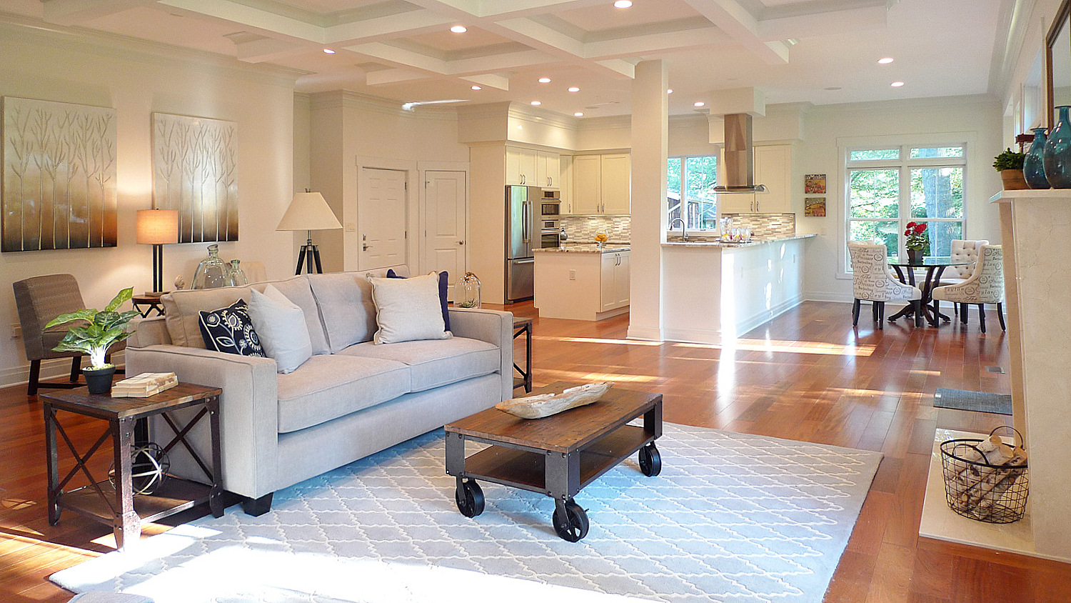 Home staging Washington DC family room