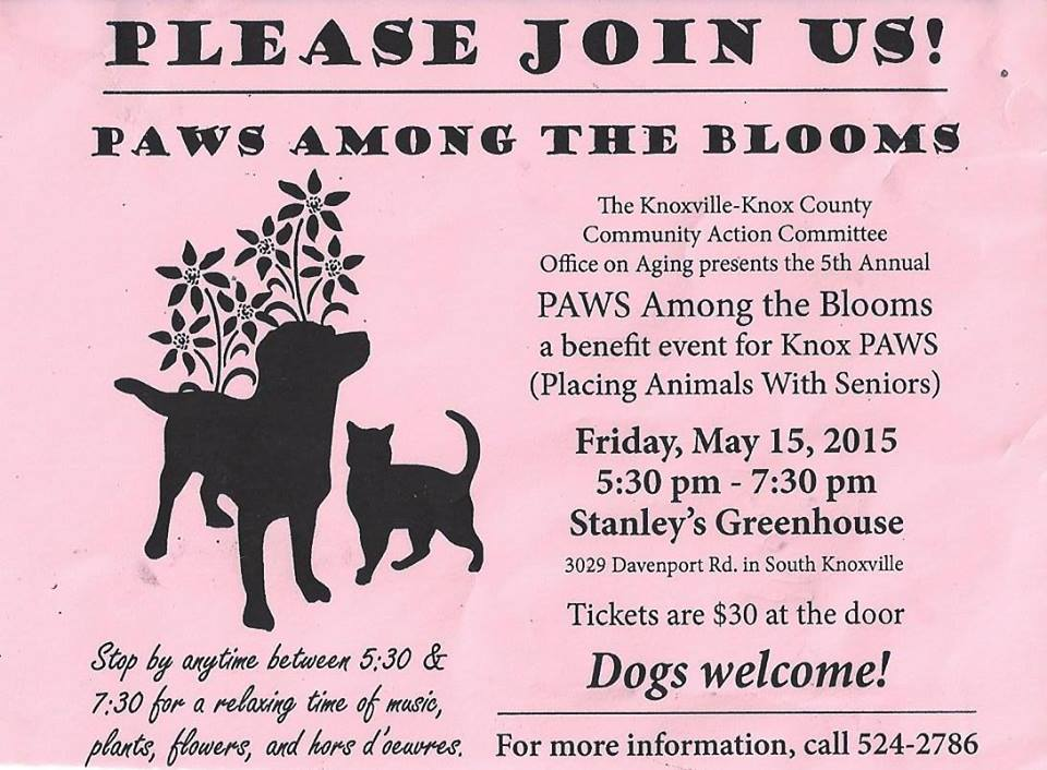 paws among the blooms poster.jpg