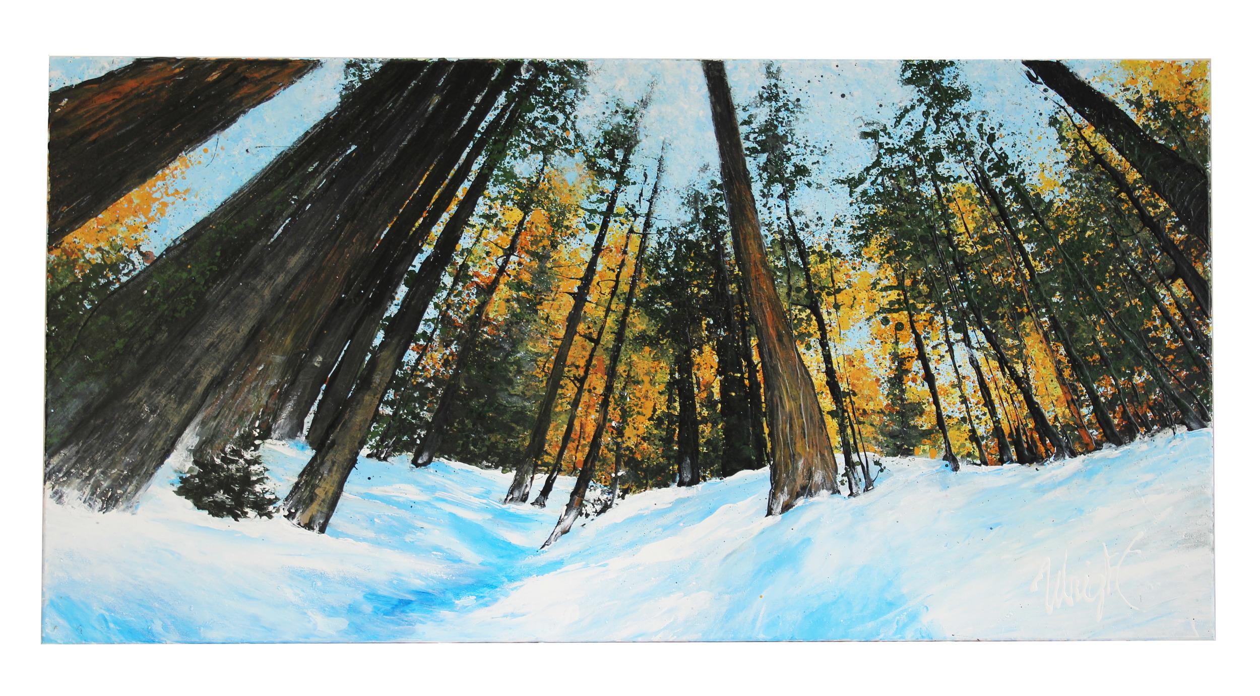 "Snow Perspective. Beaver Creek, CO   36x24"""