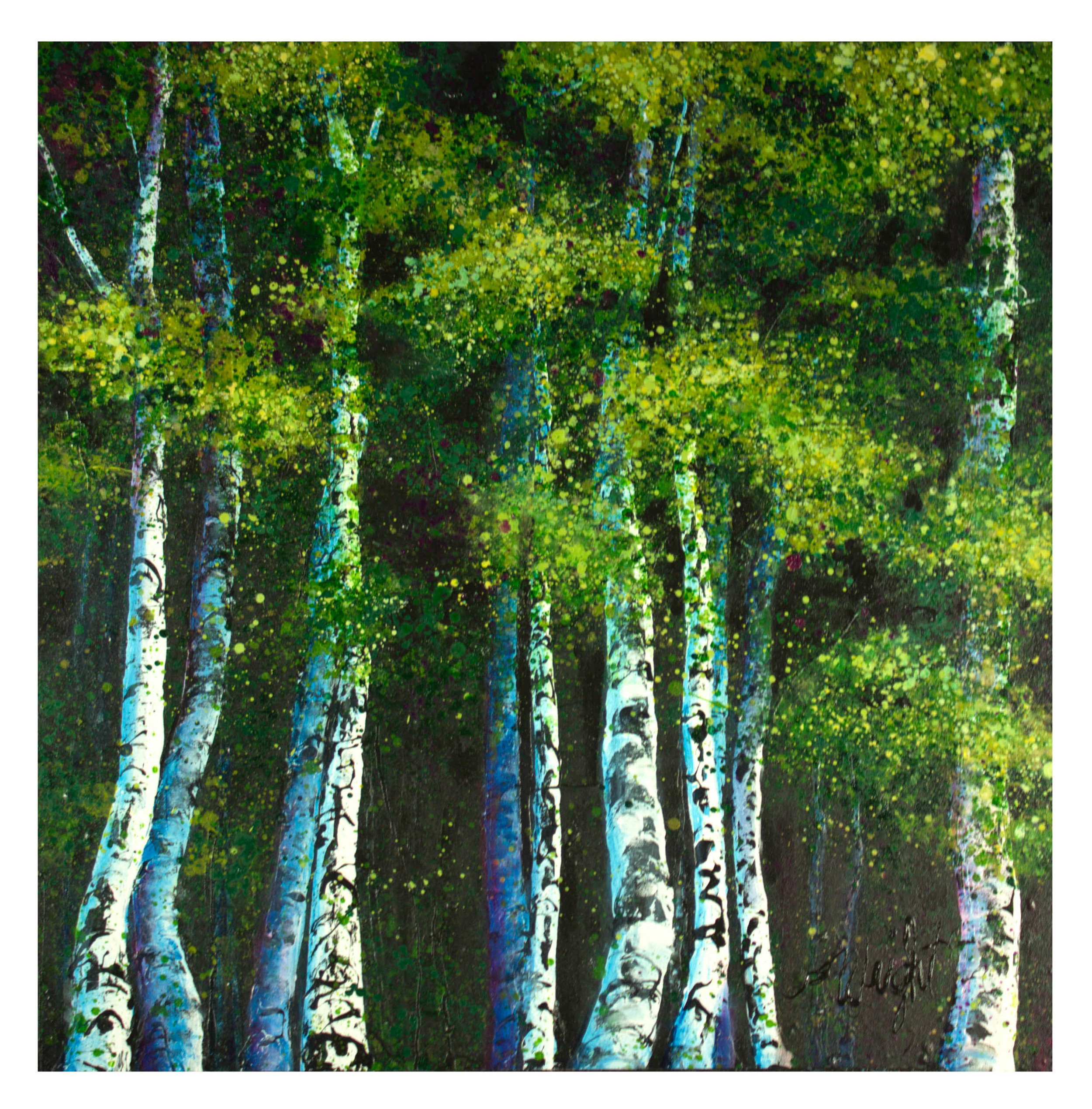 """Summer Grove. Independence Pass, CO 