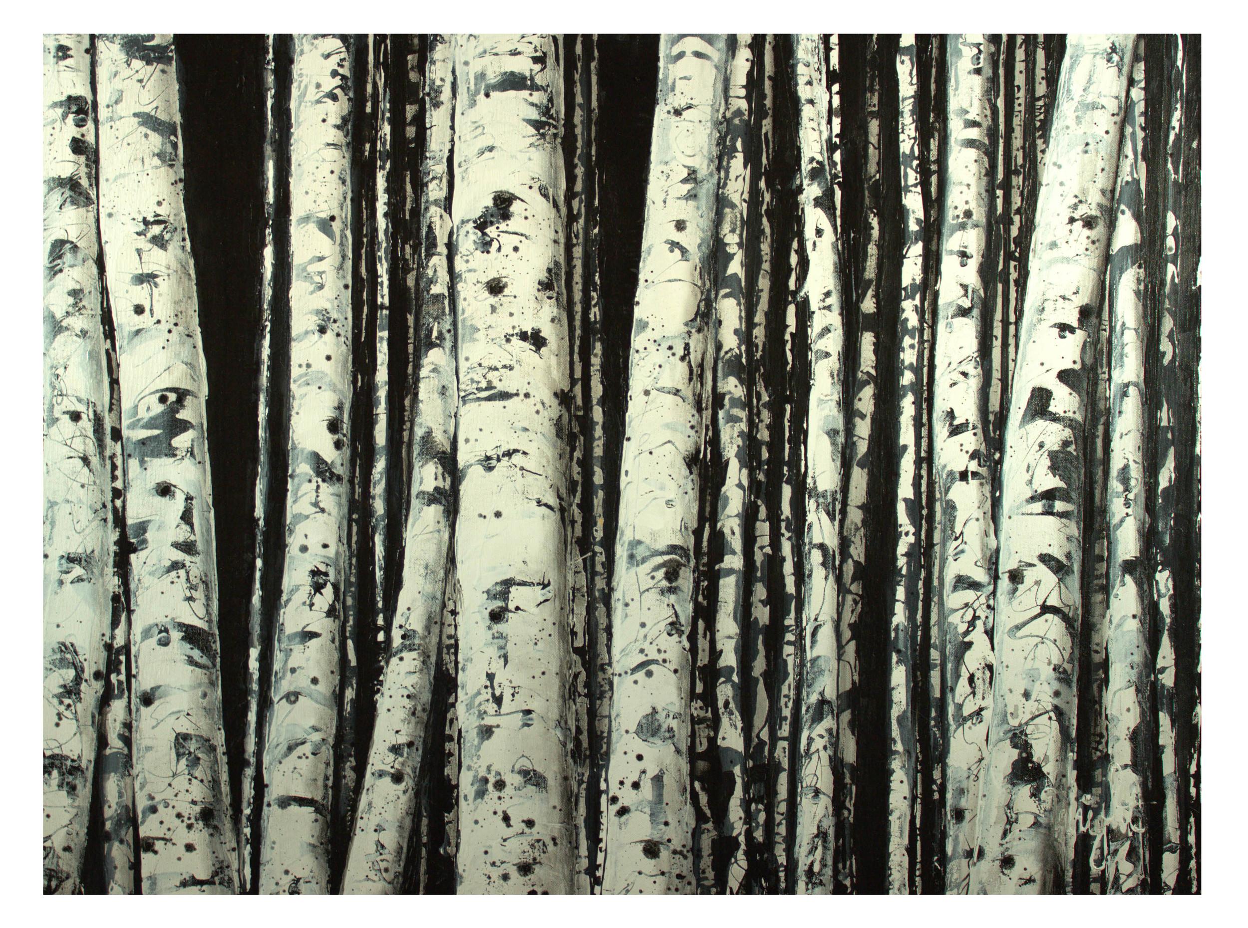 """Black and White Aspen Grove   30x40"""""""