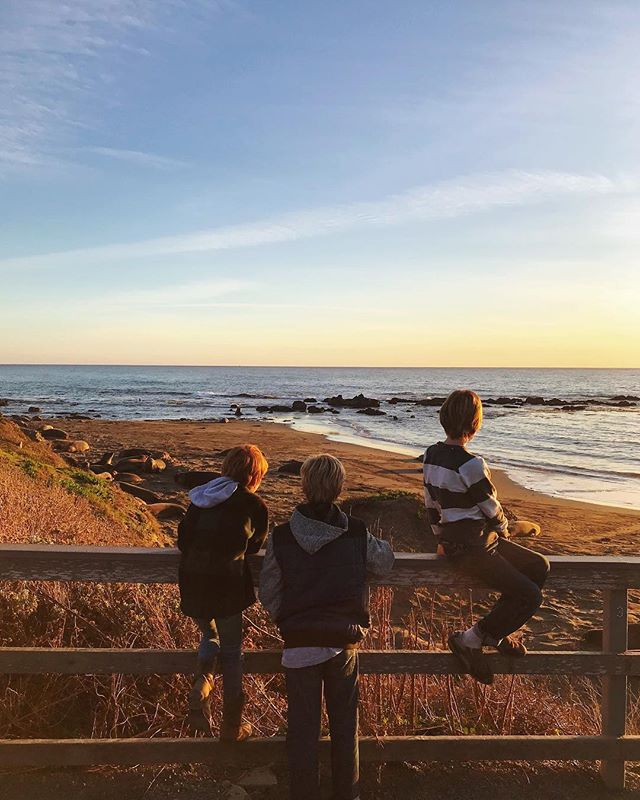 We watched the sun go down on 2018 over the Pacific Ocean with a bunch of elephant seals. 😉 We packed a lot into the day: breakfast at @madonnainn1958, watching Garet surf, street tacos and burritos in Cayucos, exploring tide pools, and celebrating east coast new year's at home. So thankful for this time with my sister and her family. It's bittersweet knowing it could easily be a year or two before we see each other again.
