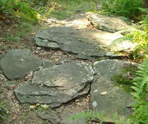 trail22.jpg