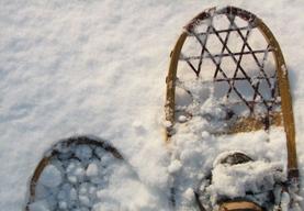 snowshoe1.jpg