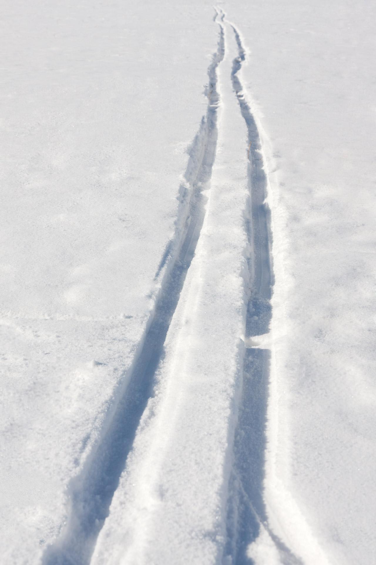ski9.jpg