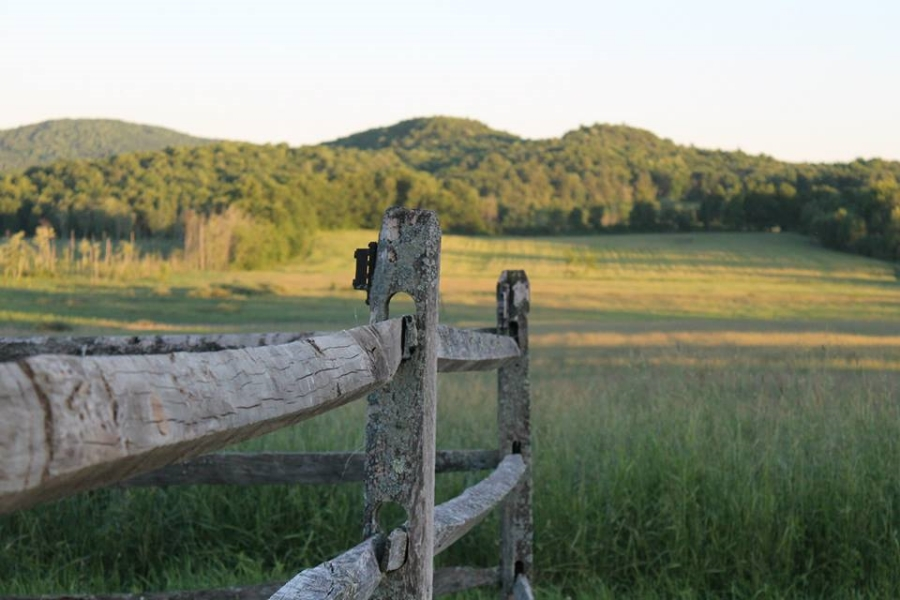 Vermont Guided Tours Scenic meadows
