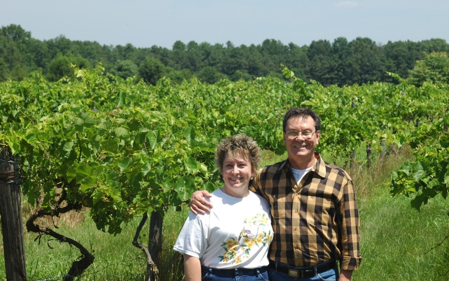 wine vineyard fun VT Guided Tours