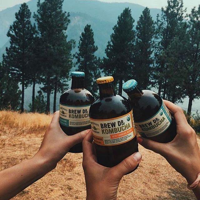 BDK Cheers.jpg