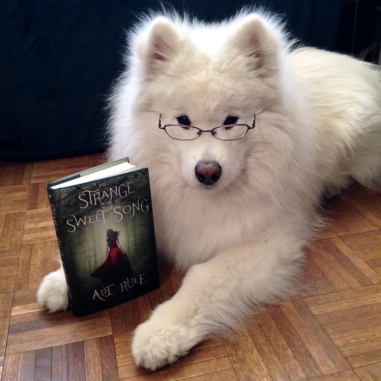 Reading his favorite YA novel