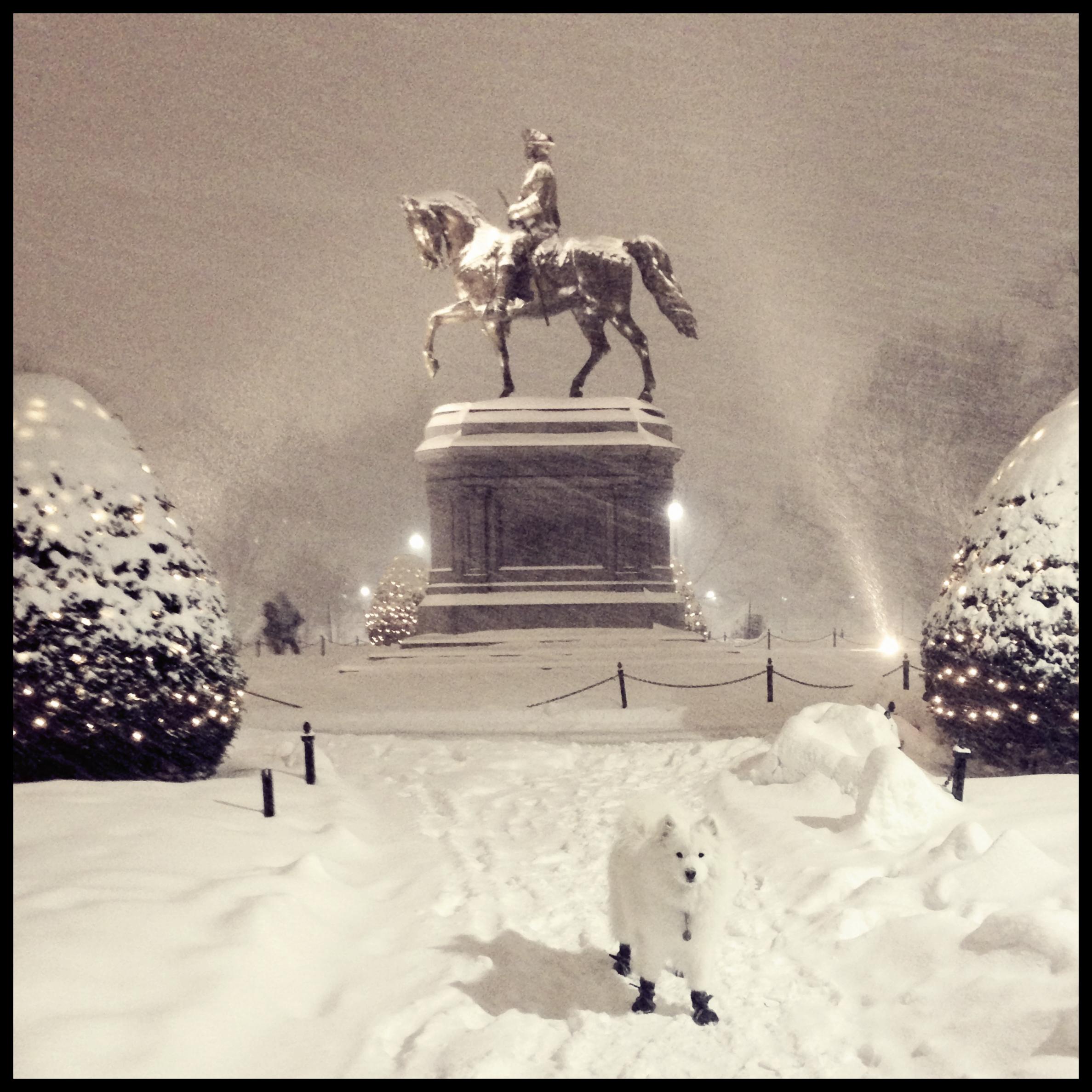 George Washington statue, Boston Public Garden