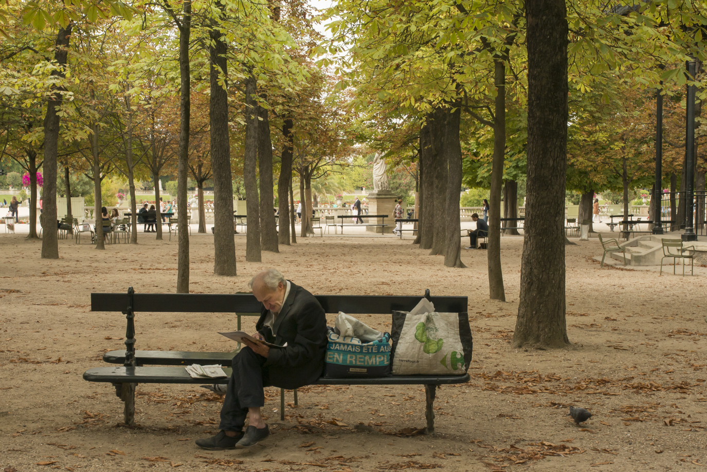Reading for hours in the Jardin du Luxembourg