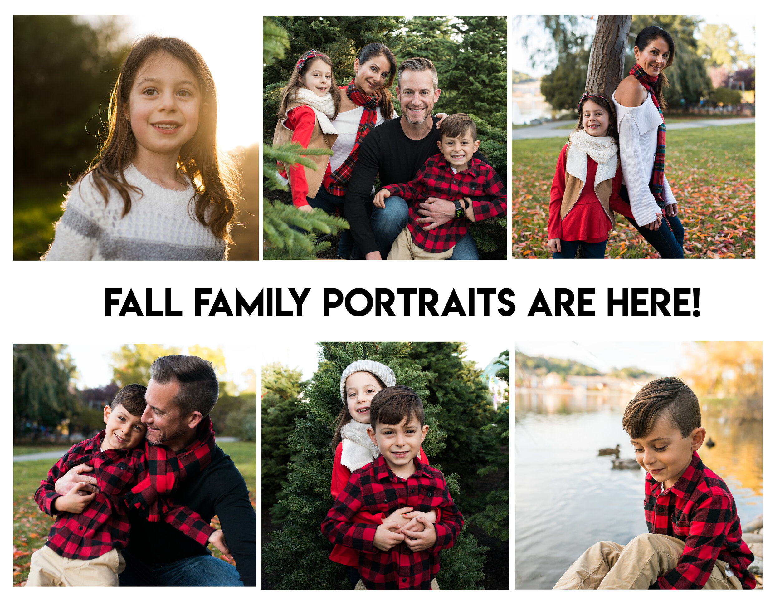 Family Portraits Ad.jpg