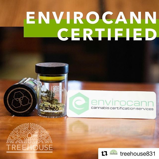 #Repost @treehouse831 with @get_repost ・・・ TREEHOUSE is super proud to announce that we are the very first Envirocann certified dispensary in the nation! To celebrate we are giving you a deal on our certified products throughout June. Look for the CERTIFIED sticker on our floor and get 15% OFF the sticker price. Check out flower by @secretlifeca, for example! Their cedar cured cannabis is 100% organic and sungrown by @thehiveca. #santacruz #treehouse #legalizeit #rootedincommunity #legalweed #dispensary #cannabiscommunity #santacruzcommunity