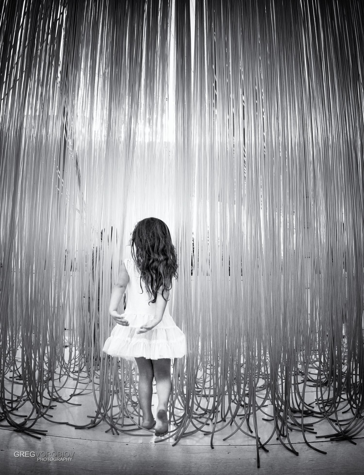 lacma_tiny_dancer_by_greg_vorobiov-1.jpg