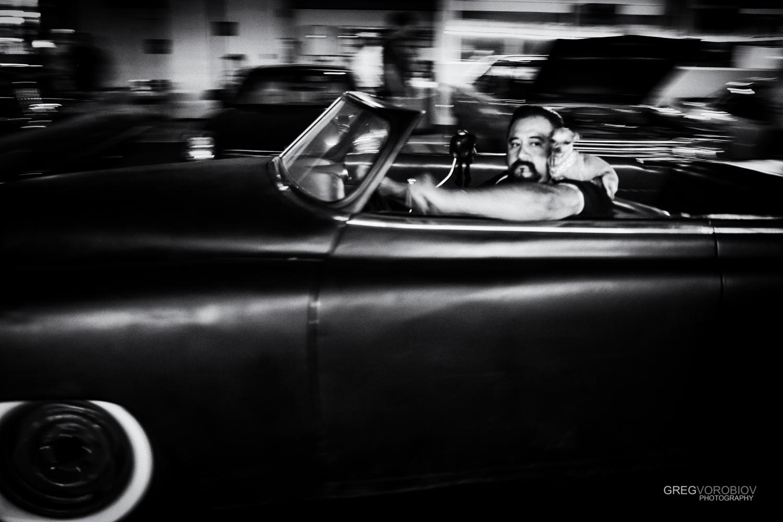 cruising_chihuahua_by_greg_vorobiov-1.jpg