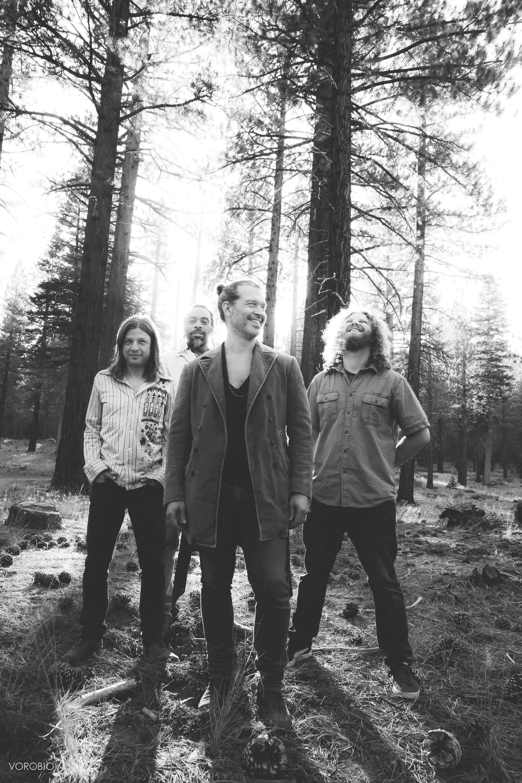 Doyle Bramhall II band