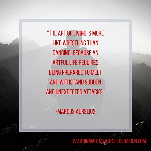 Happy Monday! How are you preparing to meet and withstand sudden and unexpected attacks?  Classes Tuesdays & Thursdays, and our Shieldmaiden Self-Protection classes starting again soon. DM or call for more info.