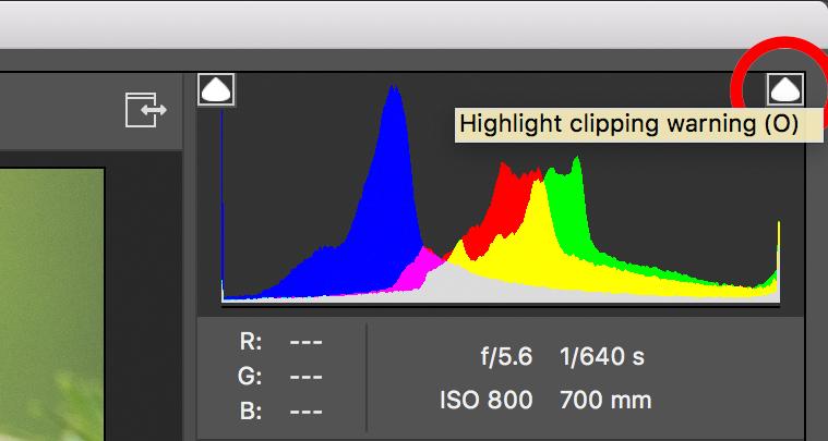 HighlightClippingWarning.jpg