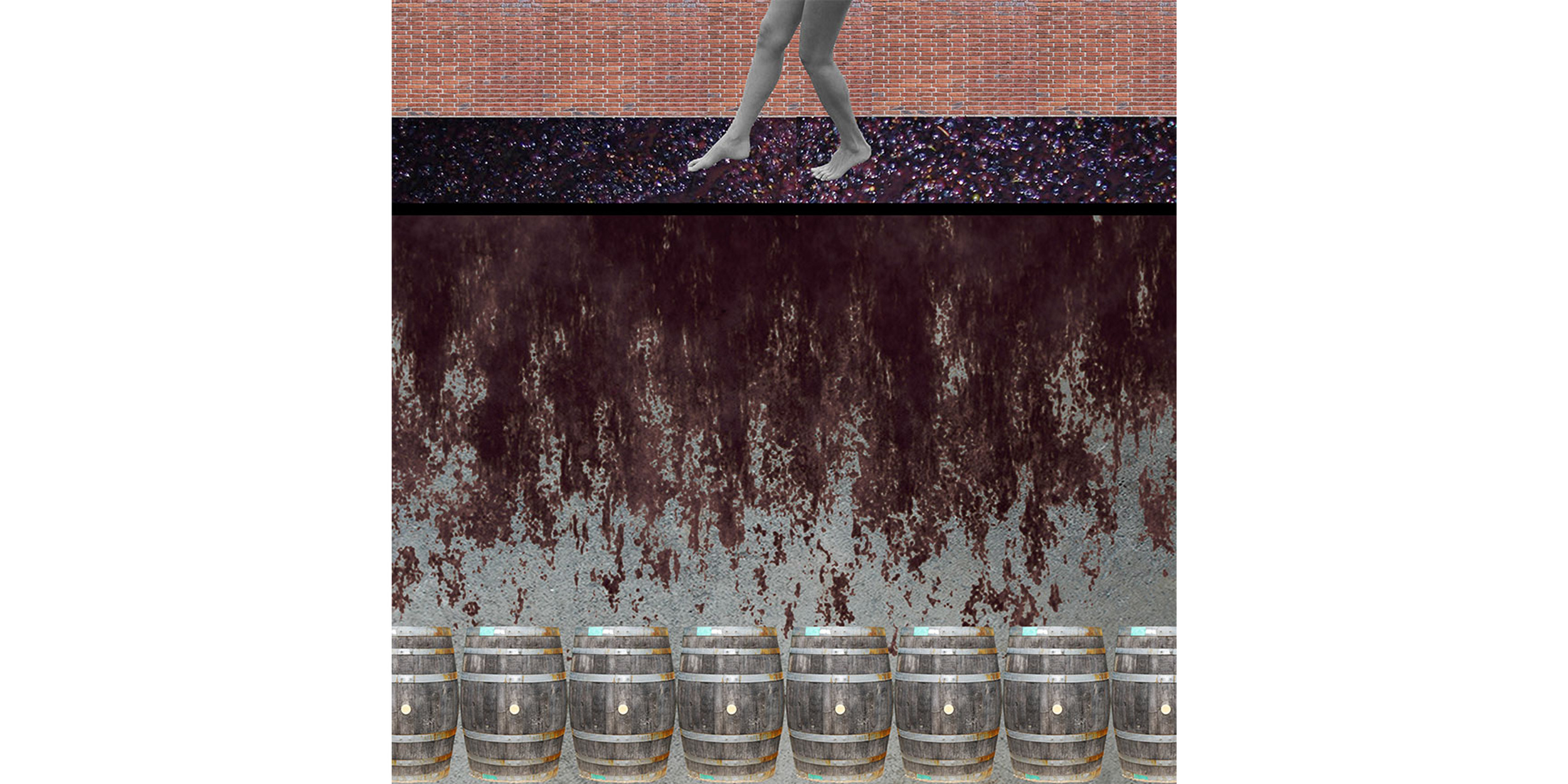 grape-stomp-collage.jpg