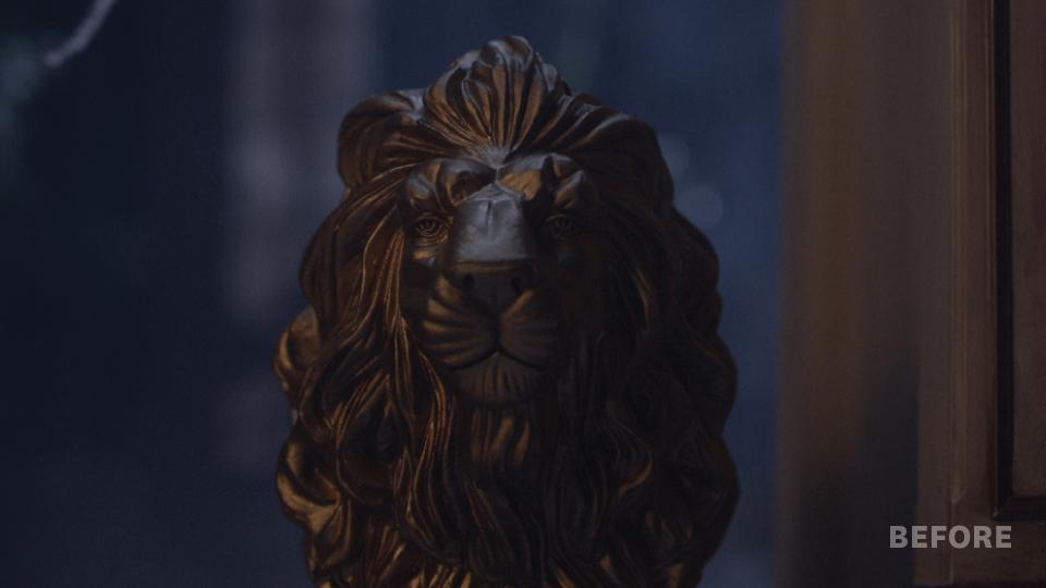 LionBefore.jpg