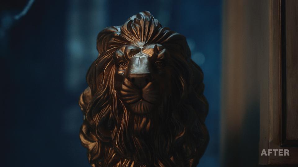 LionAfter.jpg