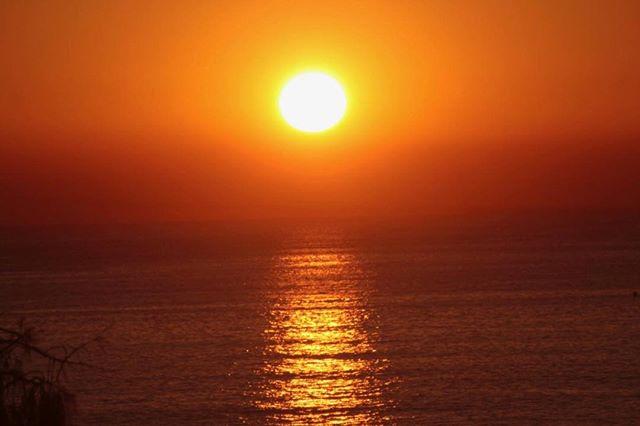 Sunny Coast sunrise.